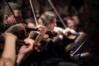 Close-up van strijkers van een orkest